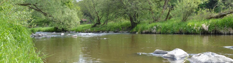 Moravský rybářský svaz Oslavany